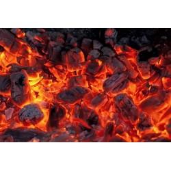 Carbón de Quebracho saco 10...