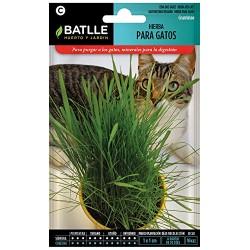 Semillas hierba para gatos...