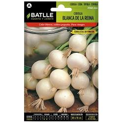 Semillas cebolla blanca de...