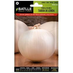 Semillas cebolla blanca...